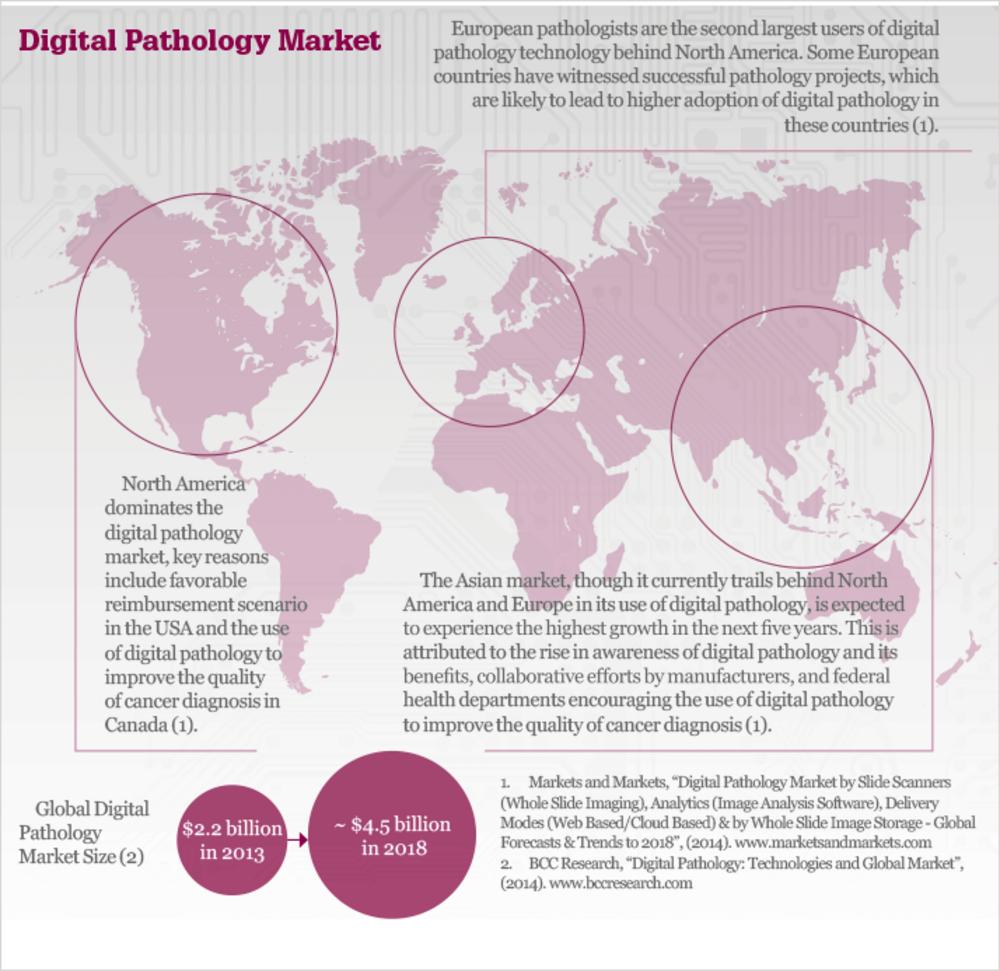 Facing the Digital Future of Pathology