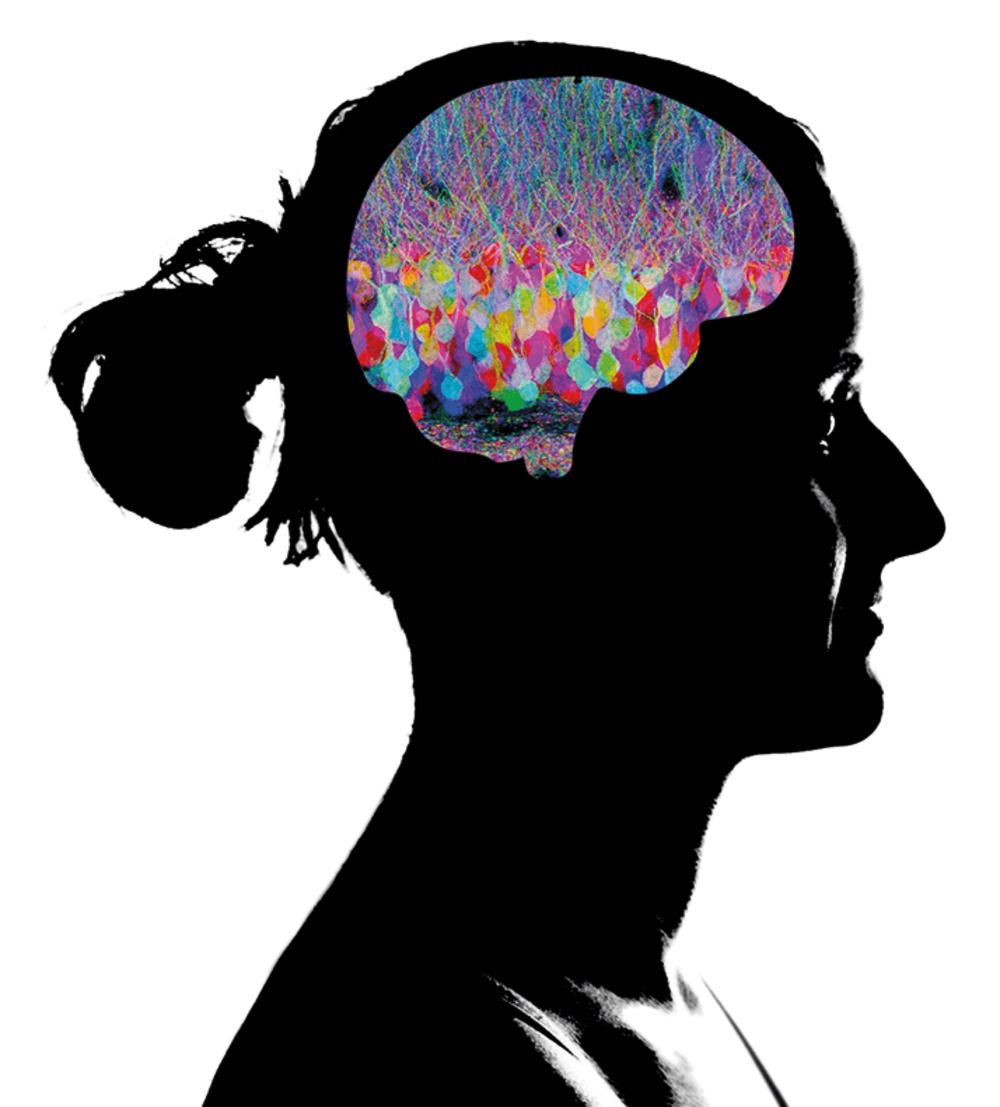 Rabies: the Hijacker in Your Brain
